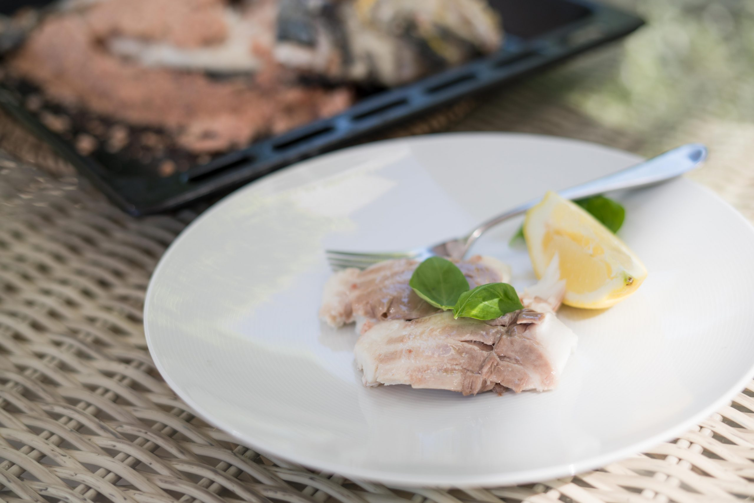 You are currently viewing Pražma – ryba pečená v soľnej kruste
